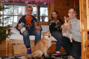 Meillä oli jouluna kaksi koiraa ja kolme kissaa. Onneksi he tuleva hyvin toimeen. 16-vuotias Siiri kissa on ehdottomasti joukon pomo, muut kunnioittavat sitä